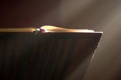 Pupitre de conférencier dans l'autel avec une bible sainte. images libres de droits