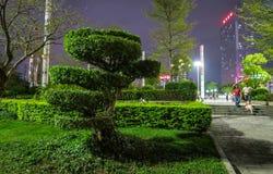 Puplicpark onderaan stad Shenzhen Zuid-China royalty-vrije stock foto's