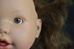 Puppenporträts Lizenzfreie Stockfotos