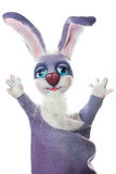 Puppet funny rabbit Royalty Free Stock Photography