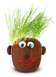 Puppet with ground wheat sprouts for hair. Stock Image