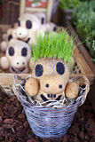 Puppet Plant Stock Images