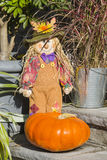 Puppet and Pumpkin Decoration in Autumn Stock Image