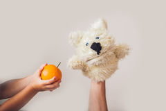 Puppet show dog on a gray background. Space for text or replicas.  Royalty Free Stock Image