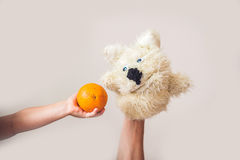 Puppet show dog on a gray background. Space for text or replicas.  Stock Photos