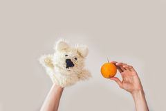 Puppet show dog on a gray background. Space for text or replicas.  Royalty Free Stock Images