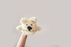 Puppet show dog on a gray background. Space for text or replicas.  Royalty Free Stock Photos