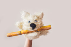Puppet show dog on a gray background. Space for text or replicas Stock Photos