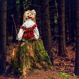 Puppet on a tree stump Royalty Free Stock Photos
