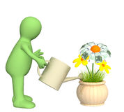 Puppet, watering monetary flower Stock Images