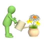 Puppet, watering monetary flower Stock Photo