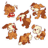 Puppies. Six cartoon  puppies, isolated from a background Royalty Free Stock Photography