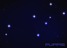 Puppies constellation Royalty Free Stock Photography