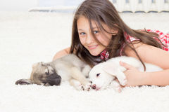 Puppies and girl Royalty Free Stock Photo