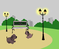 Puppies in the Park Royalty Free Stock Photos