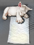 Puppies sleeping hand drawn and clipping paths Stock Image