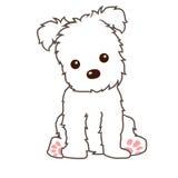 Puppy. Cartoon line art of little dog Royalty Free Stock Photos