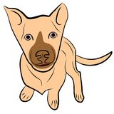 Puppy. An a vector illustration of  puppy. Files included: AI8 EPS and JPG Vector Illustration