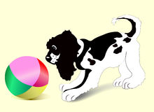 Puppy With Ball Royalty Free Stock Image