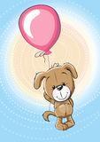 Puppy with balloon Stock Image