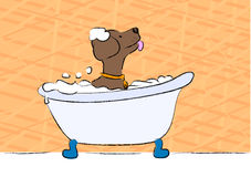 Puppy bath. Cute brown puppy taking a foam bath Stock Images