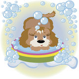 Puppy in the bathroom. royalty free illustration