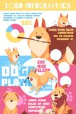 Puppy Behavior Infographics. Puppy behavior including playing and pranks, love to human, colorful infographics with charts, paw prints, vector illustration stock illustration