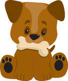 Puppy Big Paws Sitting. A cute ittle puppy with a big head looking happy with a bone in it's mouth Stock Images