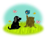 Puppy and Bird. A black little puppy and a blue bird Royalty Free Stock Photography