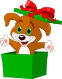 Puppy_box. Puppy jumping out from a gift box Stock Photography