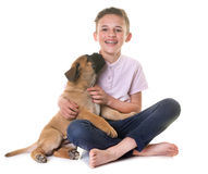 Puppy bull mastiff and child Royalty Free Stock Photography