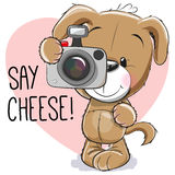 Puppy with a camera Stock Photos