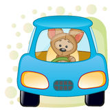 Puppy in a car Stock Photography