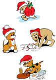 Puppy dogs christmas Royalty Free Stock Photo