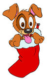 Puppy In A Christmas Stocking Royalty Free Stock Photos