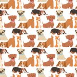 Puppy cute playing dogs characters funny purebred comic happy mammal doggy breed seamless pattern background vector. Puppy seamless pattern background vector royalty free illustration