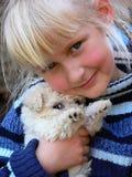 Puppy dog Stock Photos