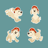 Puppy dog character design set Stock Photography