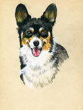 Puppy dog hand drawn sketch. Stock Photos