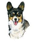 Puppy dog hand drawn sketch. Stock Photo