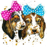 Puppy Dog Illustration With Splash Watercolor Textured Background Stock Photo