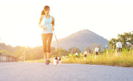 Puppy dog and young women running exercise on the street park. Puppy dog and young woman running exercise on the street park in the morning royalty free stock photos