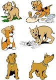Puppy dogs. Six comic cartoon style puppy dogs in different situations Royalty Free Stock Images