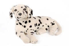 Puppy doll. Isolated in white background Stock Photos