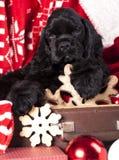 Puppy en Vintagesnowflake van hout wordt gemaakt dat Stock Fotografie
