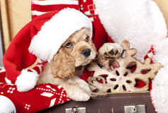 Puppy en Vintagesnowflake van hout wordt gemaakt dat Royalty-vrije Stock Fotografie