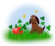 Puppy en wormen gegeten appel Stock Afbeelding