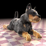 Puppy on the floor Royalty Free Stock Images