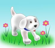Puppy and flowers. A little puppy and some flowers Royalty Free Stock Image