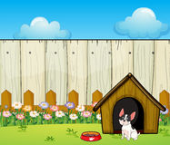 A puppy in front of the doghouse inside the fence Royalty Free Stock Photography